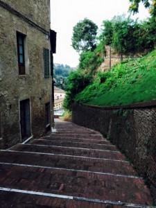 Clara - Siena - Fall 15