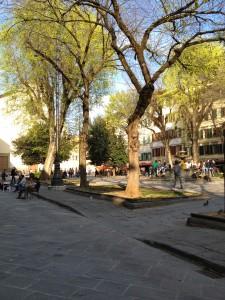 7 Piazza Santo Spirito